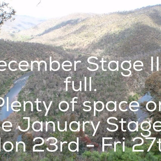 Interested in coming back to Woll on a Stage II?hellip