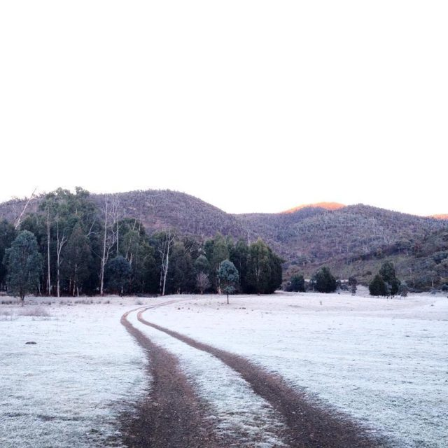 Snow in the front paddock!! Jokes its just frost